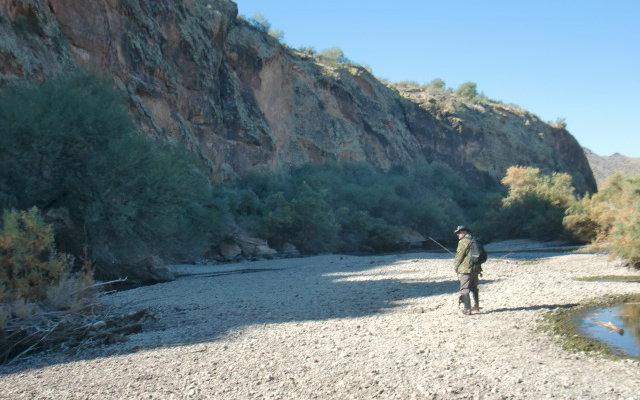 November 2010 fishing dojo for Lower salt river fishing