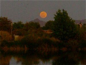 """Super-Moon"" at Veterans Oasis Lake"