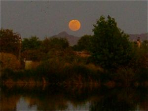 """Super-Moon"" at Veterans Oasis Lake"