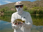 bluegill-canyon