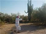 sunsu-cactus