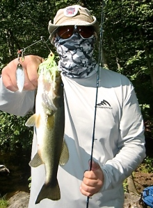 bass spinnerbait-mcmillan